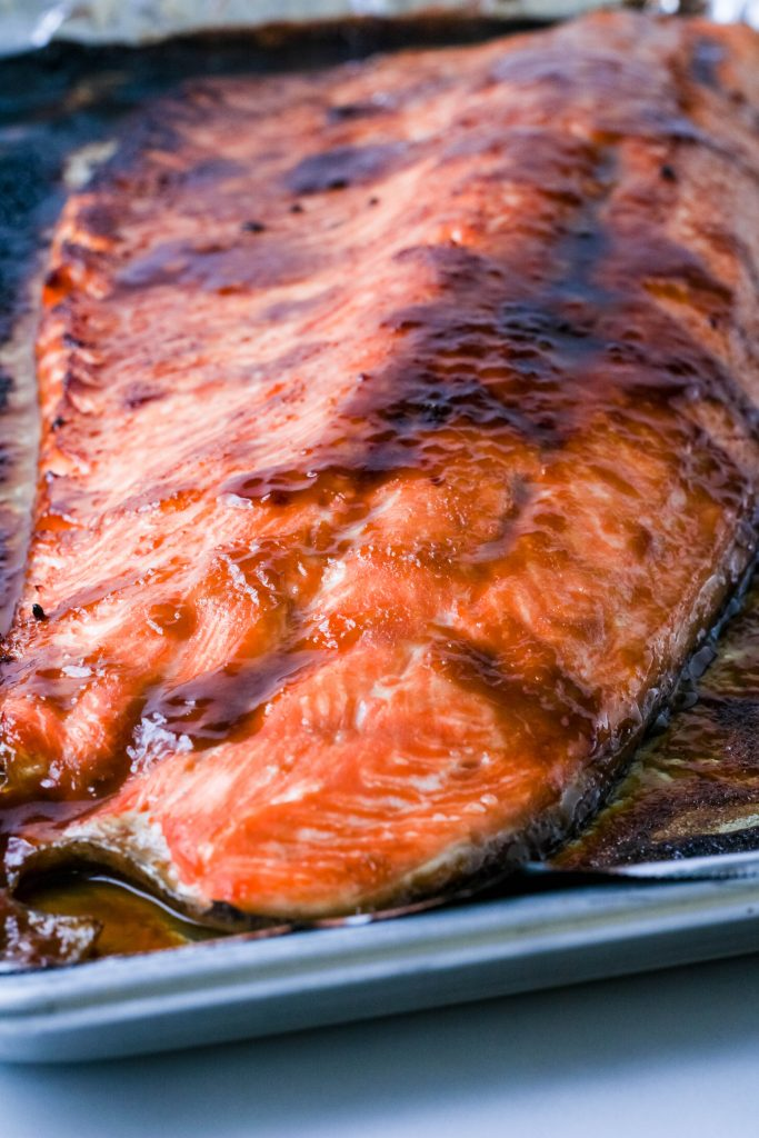 close up miso glazed salmon