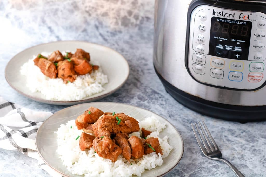 two plates of shoyu pork with sticky white rice near an Instant Pot