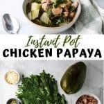 instant pot chicken papaya