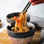 hand holding chopsticks with chicken hekka