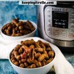 instat pot boiled peanuts pin
