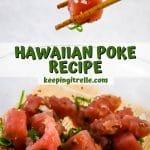 hawaiian poke pin