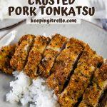 kaki mochi crusted pork tonkatsu pin